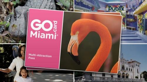 Economizando 55% nos passeios usando o GoCard Miami