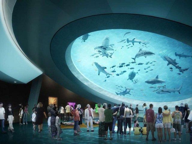 Melhores museus em Miami