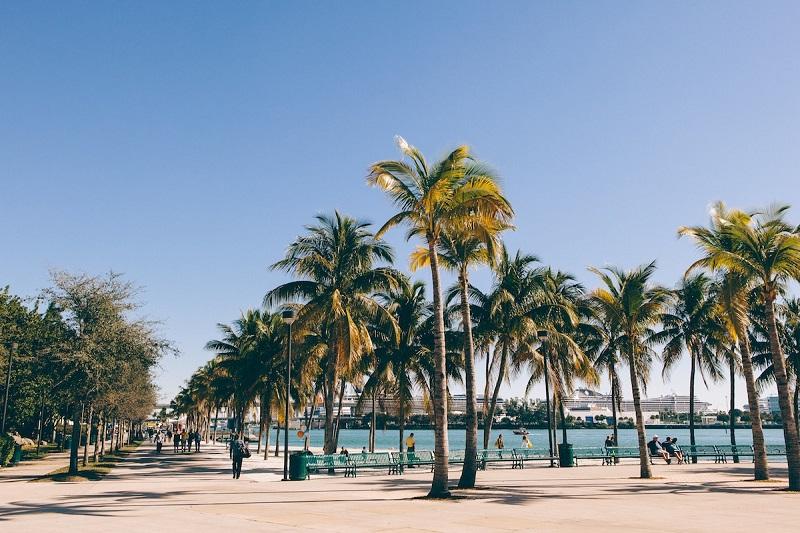Outono e inverno em Miami